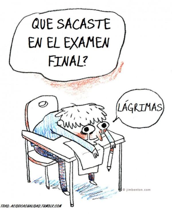 ¿Qué sacaste en el examen final?