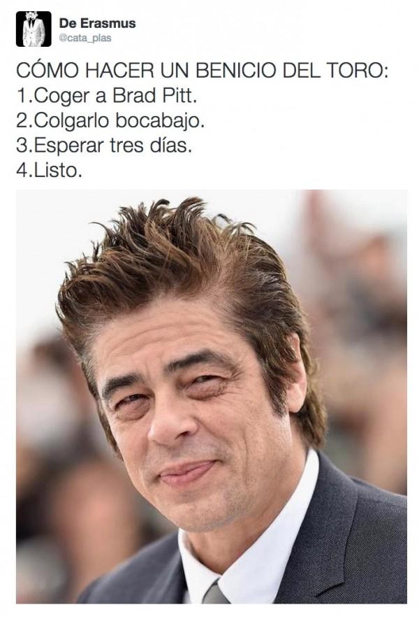 CÓMO HACER UN BENICIO DEL TORO
