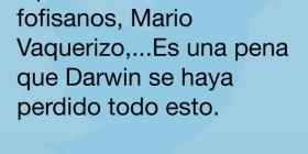 Darwin se lo pierde