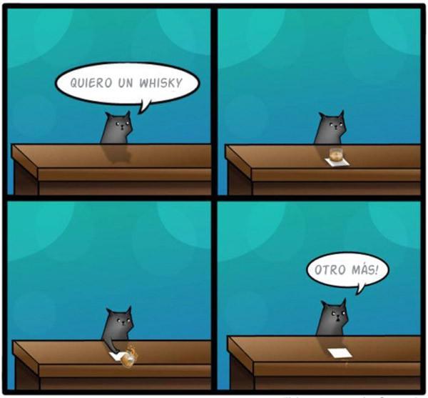 El gato y el whisky