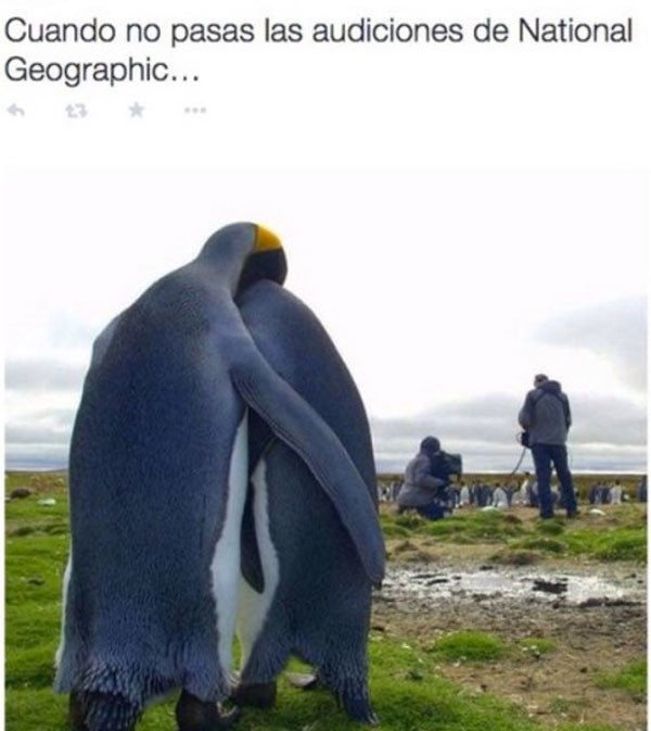 Audición de National Geographic