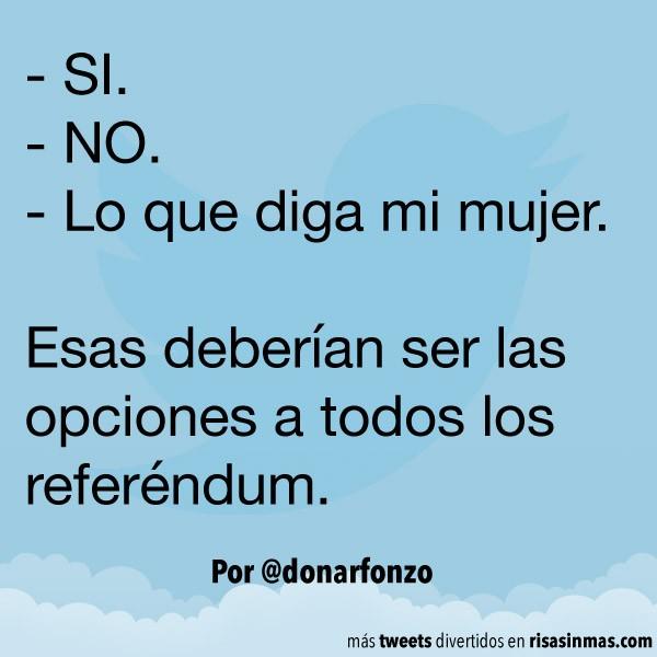Opciones de los referéndum