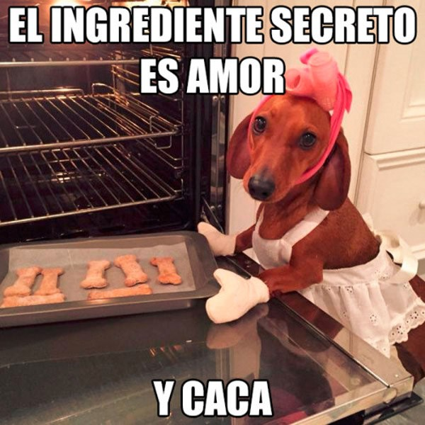 El ingrediente secreto es amor