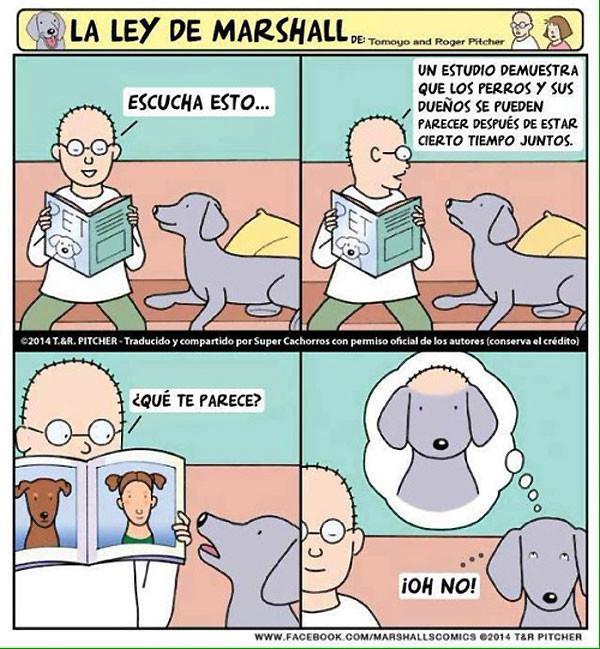 La ley de Marshall